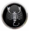 scorpio large
